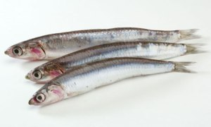 Anchovies add umami to food.